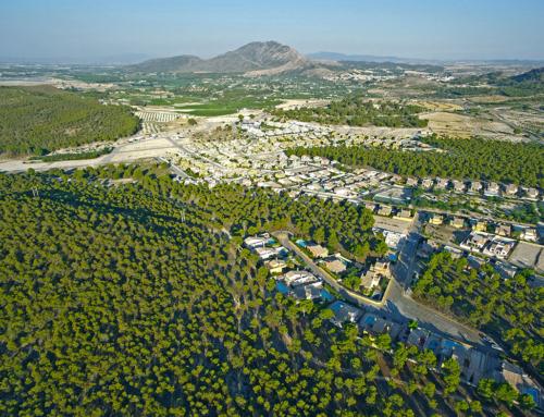 Ayudas de hasta 120.000 € para la limpieza de montes en Murcia.